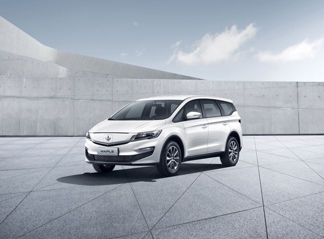Geely's first model that supports battery swap in 60 seconds goes on sale-CnEVPost