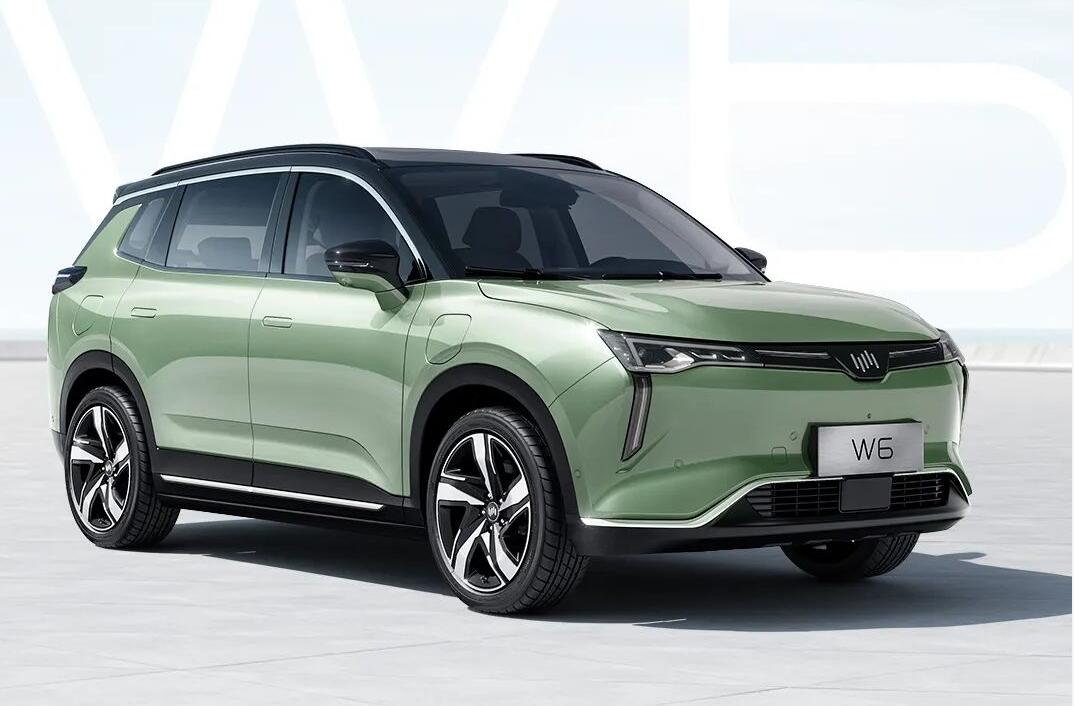 WM Motor's L4 driverless-capable WM W6 goes on sale, priced from around $26,000-CnEVPost