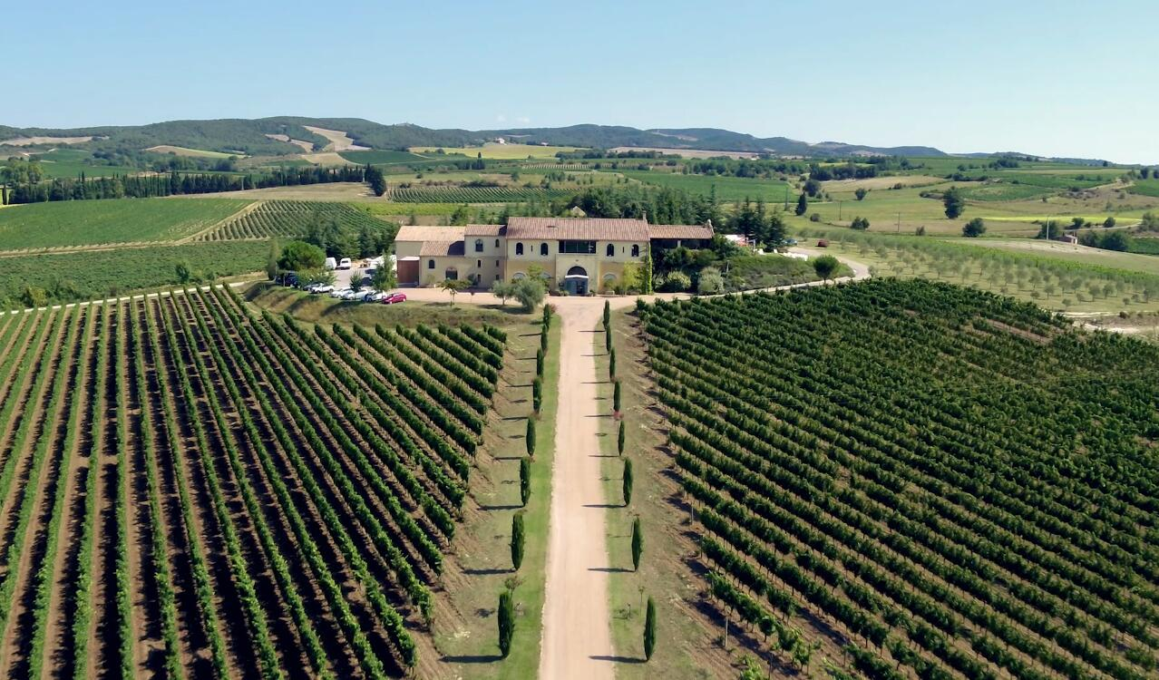 NIO now has an exclusive vineyard in France-CnEVPost